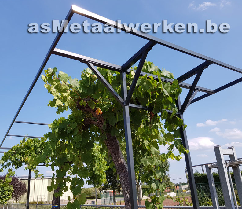 andere 0919